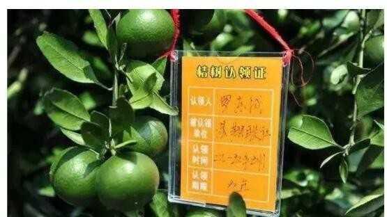 怎么在微信卖农产品?